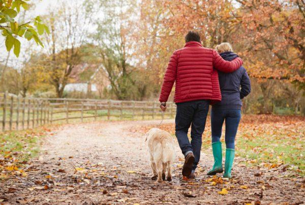 Retired couple walking dog